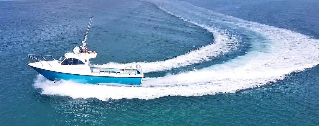 Atlantic eco tours boat